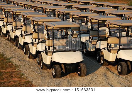 golf carts parking in rows in golf course