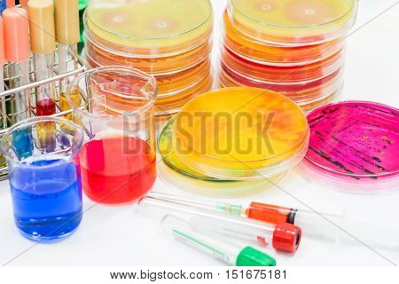 Biochem Test Kit And Media And Tube Blood Colection For Identified Pathogen In Microbiology Room.