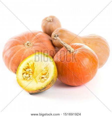 pumpkin on a white background