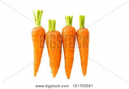 yellow carrot isolated on a white background