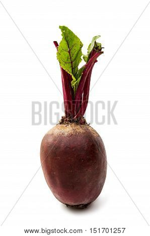 Fresh beetroot eat red isolated on white