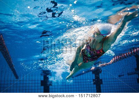 Underwater shot of fit swimmer training in the pool. Female swimmer inside swimming pool.