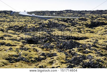 Driving through the moss covered lava fields in southern Iceland.