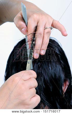 A Stylish Haircut Of A Woman.