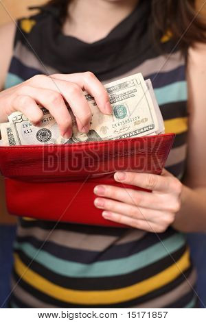 The Girl Gets Dollars From A Purse