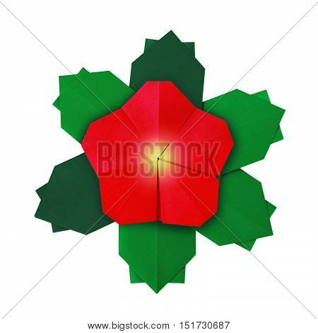 Red isolated Christmas red poinsettia flower on a white background