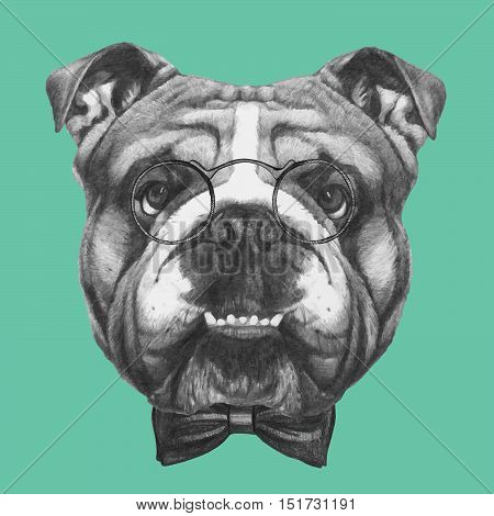 Hand drawn portrait of English Bulldog with glasses and bow tie.