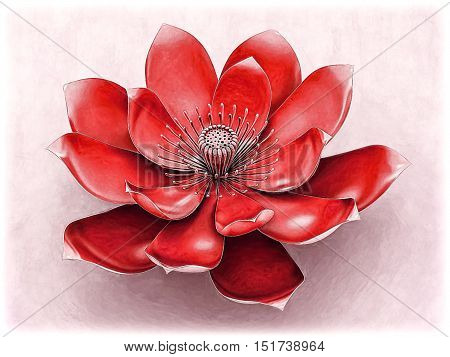 Illustration of a lotus flower  with root chakra color red.