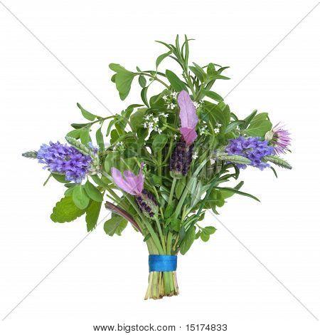 Herb Flower Posy