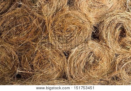 Background of bales of golden hay stacked on each other. Backdrop and texture of dry grass.