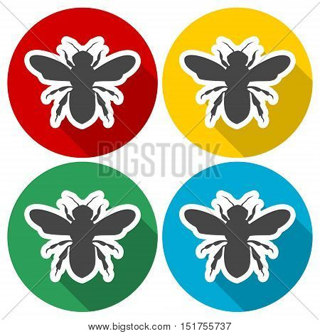 Bee icon, Bee icon vector, Bee icon simple set