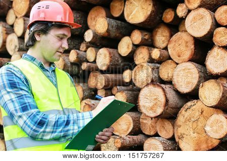 Worker in a helmet counts wood lumber