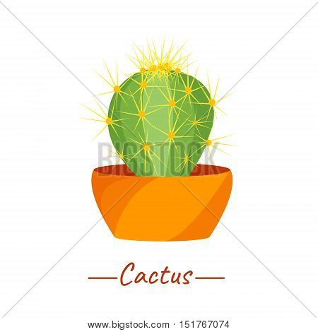 Cacti vector plant in a flower pot on yellow background. Echinopsis cultivar Haku jo. Home interior floral design elements. Green succulent plants, nature concept. Tropical exotic botany collection.