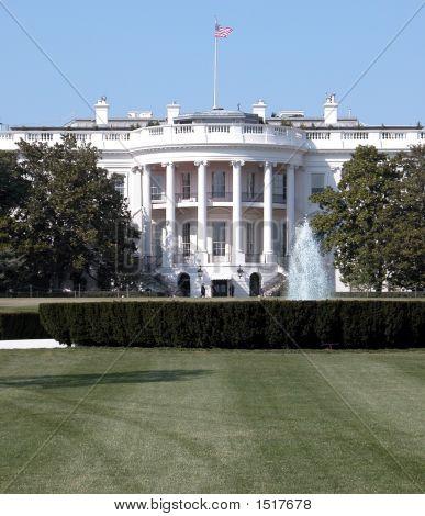 White House Close-Up