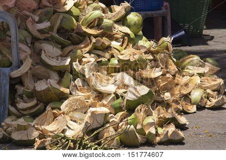 Coconut waste excess demand in Cambodia, Asia