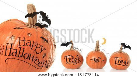 Happy Halloween and trick or treat pumpkins.