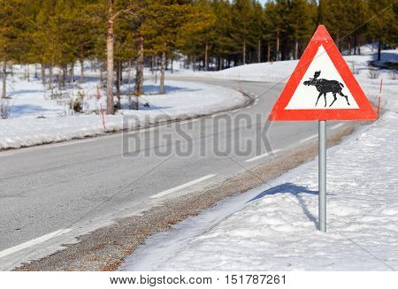 Norwegian road sign beware of moose at a road during winter.
