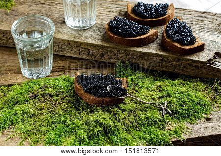 Sandwiches with black caviar. Two faceted glass with vodka. Spirits. The old Board and moss. Russian food.