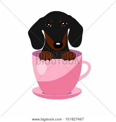cute Dachshund dog in pink teacup, illustration, set for baby fashion.