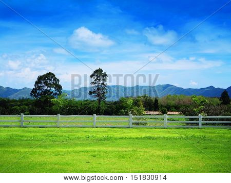 Green Grass field with hill in the countryside of Thailand