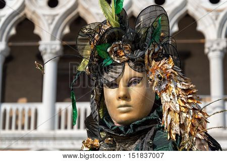 VENICE, ITALY - FEBRUARY 15, 2015: An unidentified person on a traditional costume, posing in front of the Doges Palace during the Carnival of Venice