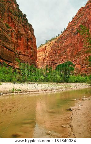 View of the Virgin river as it winds through Zion national park