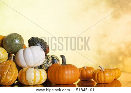 Assorted Pumpkins Gourds and Squash Sitting on Shinny Surface with a Blurred Autumn Background