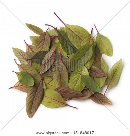 Heap of fresh amaranth leaves on white background