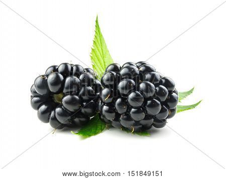 Blackberry. Ripe fresh blackberries isolated on white background with leaves.