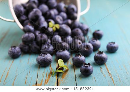 berries blueberries(bilberry) on a blue wooden background selective focus.