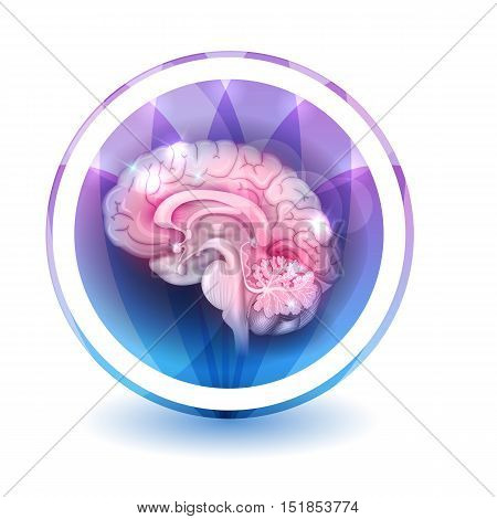 Brain Sign Treatment, Round Shape Colorful Overlay Flower Petals At The Background