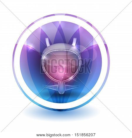 Urinary Bladder Sign, Round Shape Colorful Overlay Flower Petals At The Background