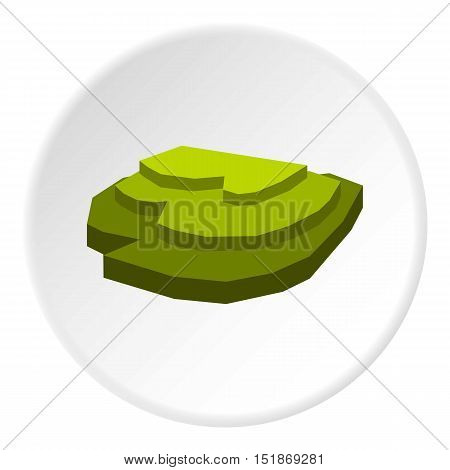 Rice field icon. Flat illustration of rice field vector icon for web