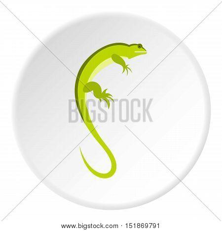 Long iguana icon. Flat illustration of long iguana vector icon for web