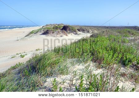 Sand Dune in Cape Hatteras National Seashore, on Hatteras Island, North Carolina, USA.