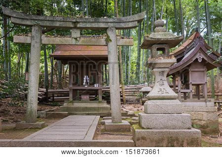 Kyoto Japan - September 16 2016: A small Shinto Shrine is built in the garden of Shorenin Buddhist Temple. It consists of a stone Torii and lantern and two small wooden structures. Surrounded by a bamboo forest.