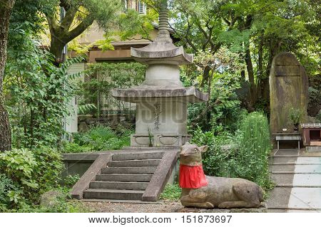 Kyoto Japan - September 16 2016: Corner of formal garden at Shorenin Buddhist Temple consists of obelisk with stairs a deer wit red apron and a stela depicting Quan Yin.