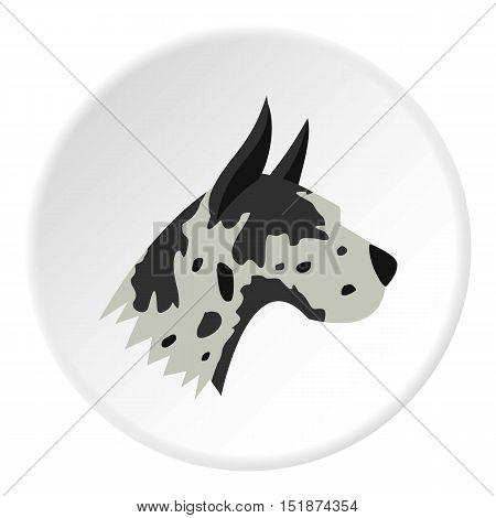 Great dane dog icon. Flat illustration of great dane dog vector icon for web