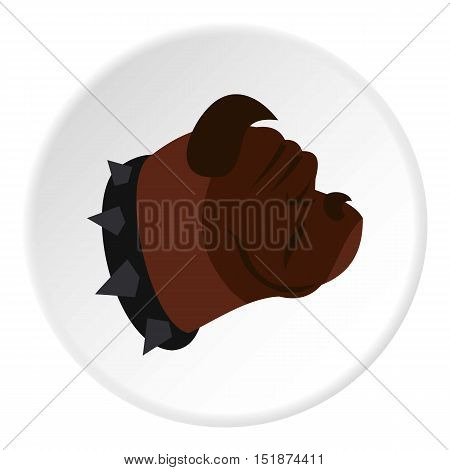 Bulldog dog icon. Flat illustration of bulldog dog vector icon for web