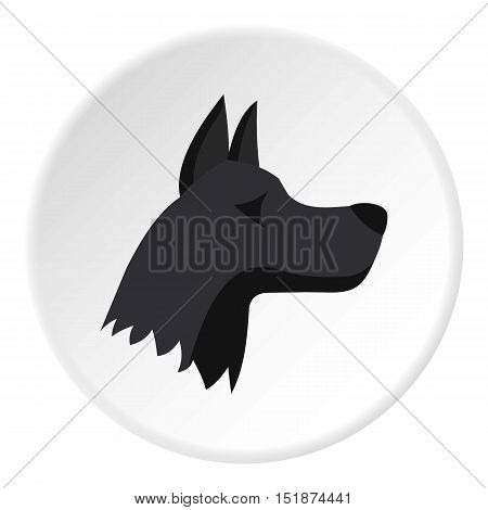Doberman dog icon. Flat illustration of doberman dog vector icon for web