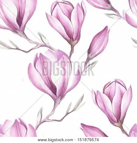 Seamless pattern with blooming magnolia twig. Watercolor illustration