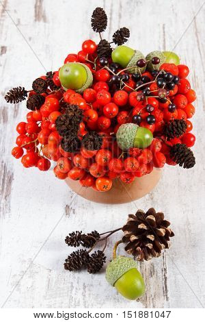 Autumn Fruits Of Forest On Rustic Wooden Background
