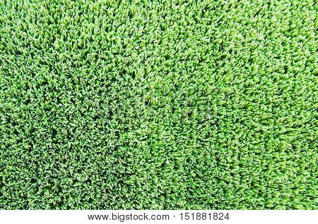 artificial green grass turf floor texture background