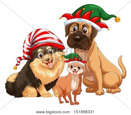 Three cute dogs with jester hats illustration