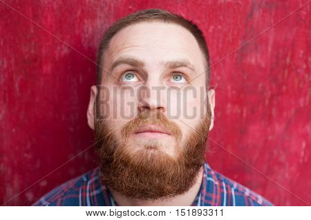 handsome young man with beard on red background looking up