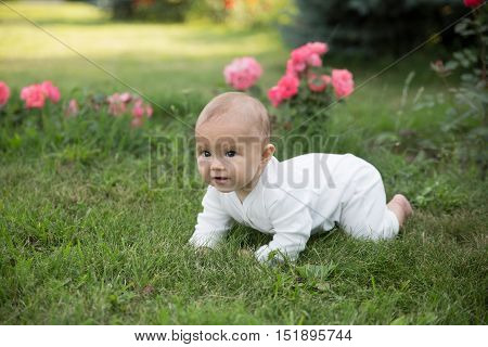 Baby girl crawling on the grass. Selective focus on her eyes.