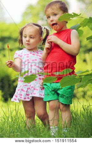 Little pretty girl and boy lick lollipops in summer sunny green park