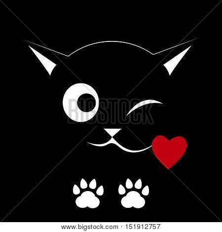 Black cat on a black background. Winks