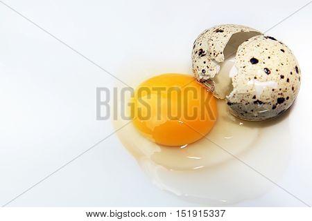 Broken Raw Quail Egg.