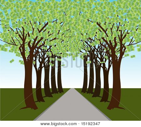 An image of a money tree forest